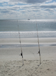 Fishing - Ocean Isle