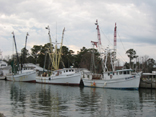 Shrimp boats, Sneads Ferry